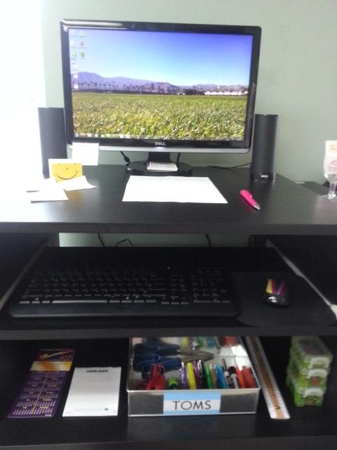 stevie desk 1